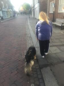 Dog behaviour and training Kent