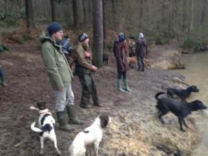 dog training kent