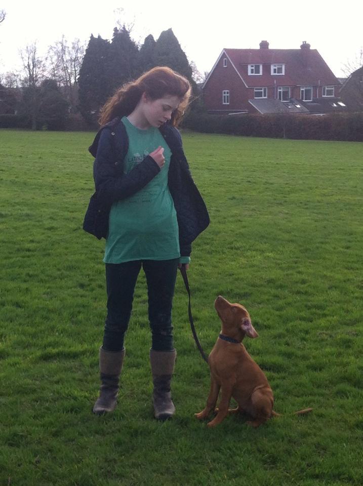 Puppy training classes kent