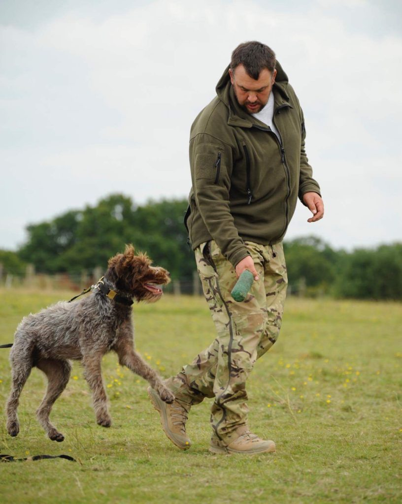 gundog training hpr