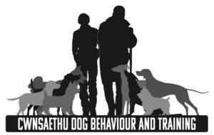 rebelritsi gundogs, rebelritsi dog behaviour and training, cwnsaethu, hannah spearman, james reavil